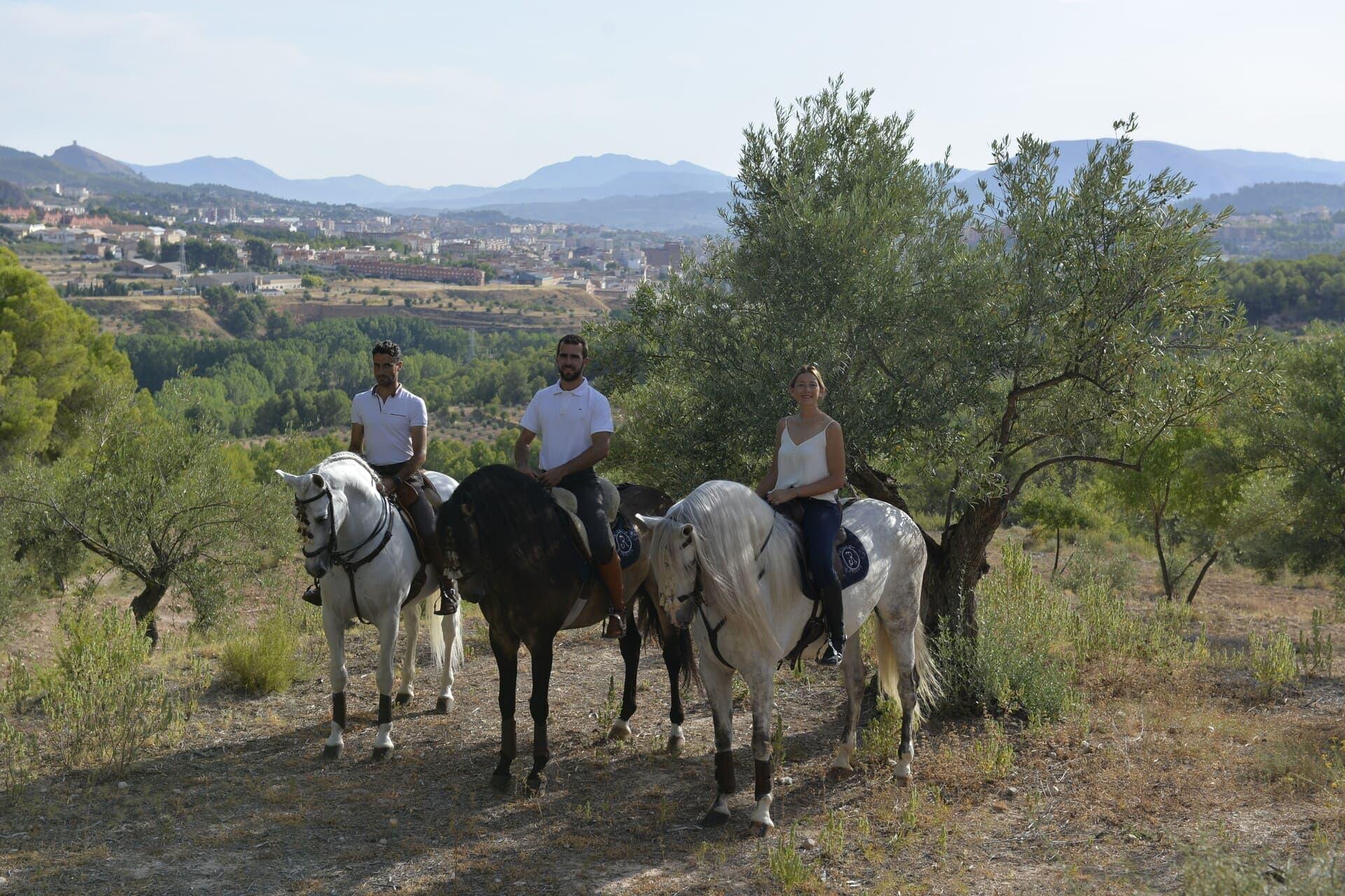 Paseos a caballo Alicante Interior_DSC0245