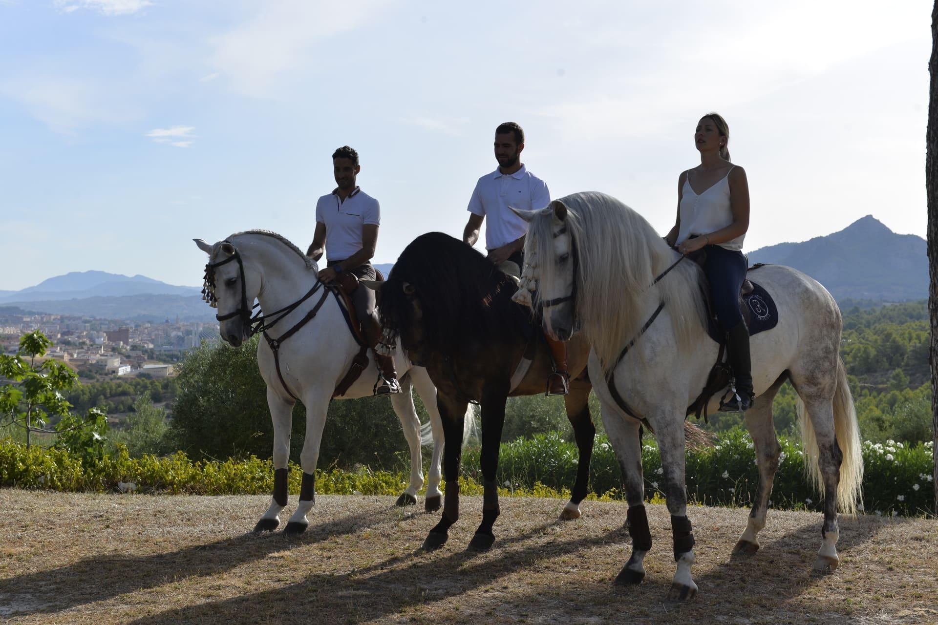 Equitación Peluca